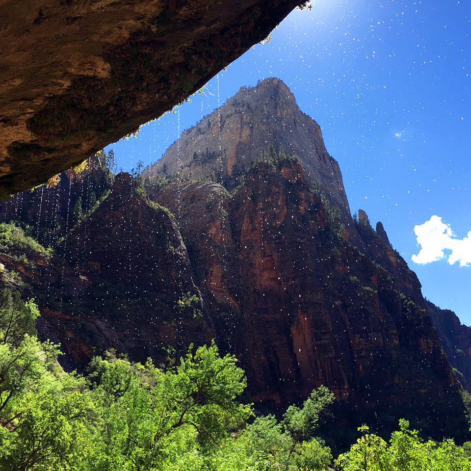 Places To Live Near Zion National Park: Zion National Park (Image By